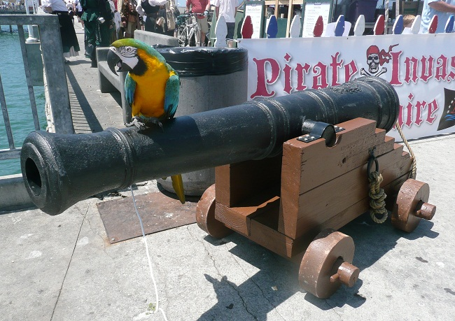 pirate cannons for sale, picture of a pirate cannon