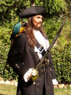 pirate entertainer with parrot and pirate actor