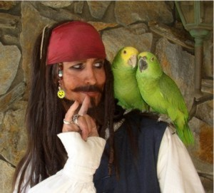 Captain Jack the pirate  for hire with parrots for pirate party