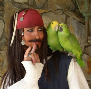 Parrot Jack a satirical parody of jack sparrow and Johhny Depp impersonator for_hire_in LA_CA_Orange county and the USA