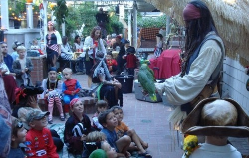 parrot show for a children's birthday party or a pirate theme party